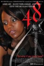 48 (2011) afişi