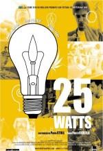 25 Watt
