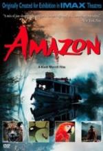 Amazon (ı) (1997) afişi