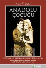 Anadolu Çocuğu (1964) afişi