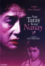 Ang Tatay Kong Nanay (1978) afişi