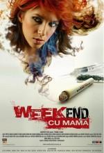Annemle Bir Haftasonu (2009) afişi