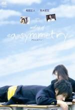 Asimetri (2008) afişi