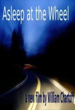 Asleep At The Wheel (2011) afişi