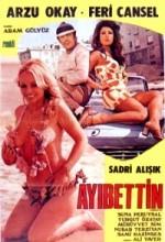 Ayıbettin Şemsettin (1971) afişi