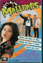 Aylaklar (1995) afişi