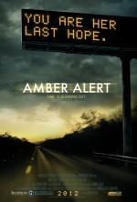 Amber Alert (2012) afişi