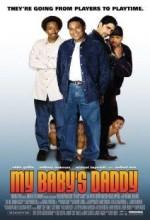 Bebeğimin Babası (2004) afişi