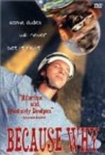 Because Why (1993) afişi