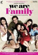 Bizim Aile (2010) afişi