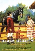 Black Beauty (1921) afişi
