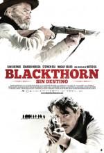 Blackthorn (2011) afişi