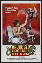 Bruce Lee Fights Back From The Grave (1976) afişi