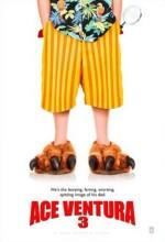 Budala Dedektif 3 (2009) afişi