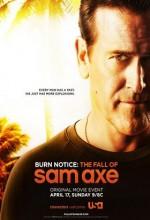 Burn Notice: The Fall Of Sam Axe (2011) afişi