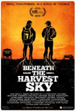 Beneath the Harvest Sky (2013) afişi