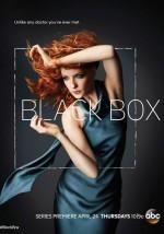 Black Box (2014) afişi