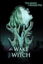 Cadı Uyandırmak