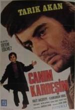 Canım Kardeşim (1973) afişi