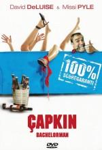 Çapkın (II) (2003) afişi