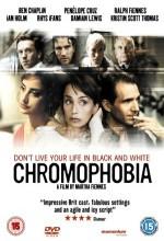 Chromophobia (2005) afişi