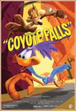 Coyote Falls (2010) afişi