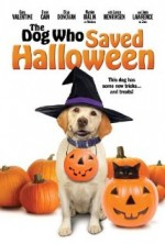 Cadılar Bayramını Kurtaran Köpek
