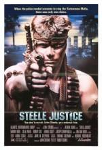 çelik Adalet