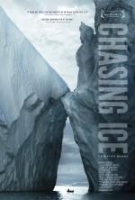 Buzun Peşinde (2011) afişi