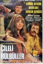 Çileli Bülbül(ı) (1970) afişi