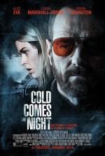 Soğuk Gece Gelir (2013) afişi