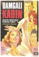 Damgalı Kadın (1966) afişi