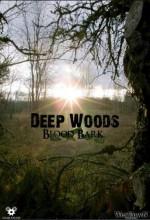 Deep Woods (2011) afişi