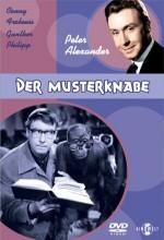 Der Musterknabe (1963) afişi