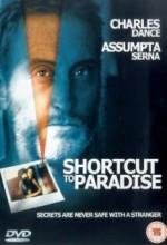 Desvío Al Paraíso (1994) afişi