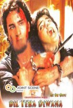 Dil Tera Deewana (1996) afişi