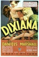 Dixiana (1930) afişi