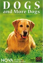 Dogs And More Dogs (2004) afişi