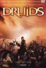 Druids (2001) afişi