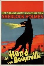 Der Hund Von Baskerville (1929) afişi