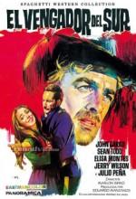 El Vengador Del Sur (1969) afişi