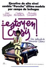 Estoy En Crisis (1982) afişi