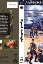 Eye Of The Eagle (1986) afişi