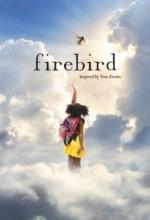 Firebird (ı) (2011) afişi