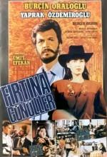 Fırtına Gönüller (1984) afişi
