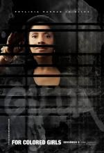 Renklerin Hikayesi (2011) afişi