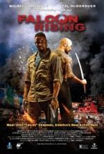 Falcon Rising (2014) afişi