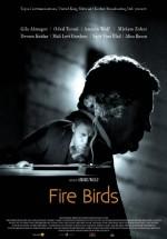 Fire Birds (2015) afişi