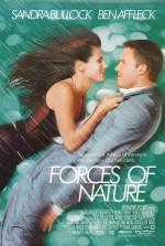 Fırtınalı Aşk