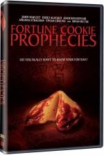 Fortune Cookie Prophecies (2011) afişi